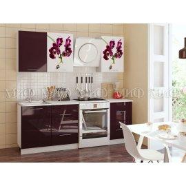 Кухня Орхидея-1 1700