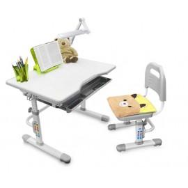 Комплект: растущая парта и стул с чехлом Rifforma SET 10 G
